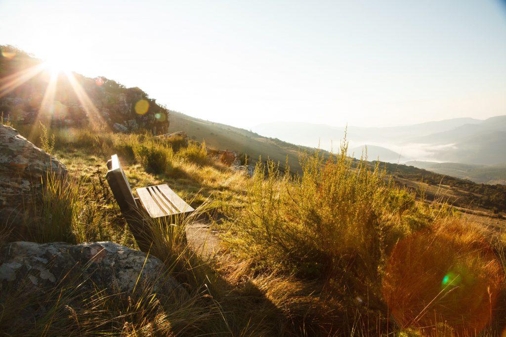 mount sheba viewpoint bench